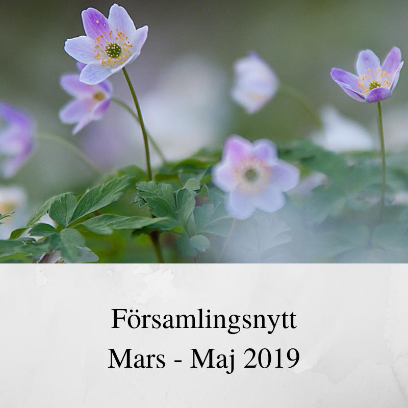 Församlingsnytt mars – maj 2019