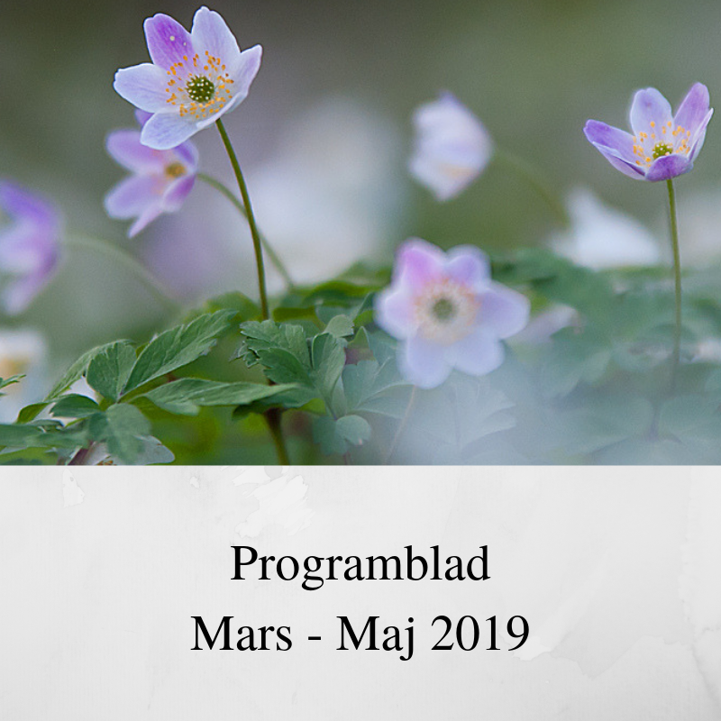 Programblad mars- maj 2019